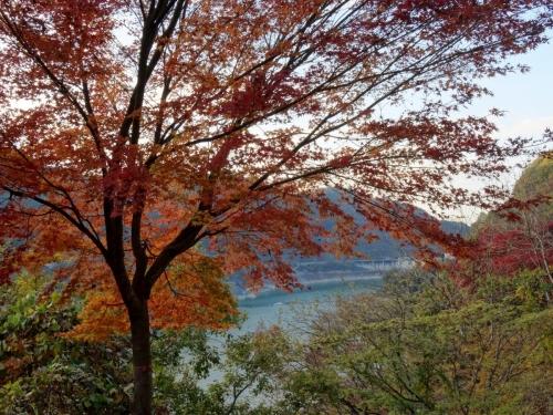 13浦山ダム紅葉 (1200x900)