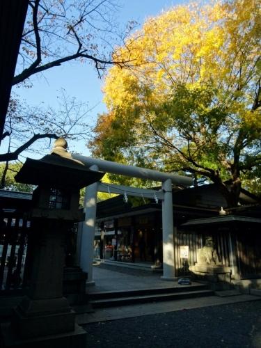 8乃木神社 (900x1200)