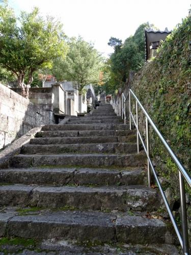 7小曽根家墓所へ (900x1200)