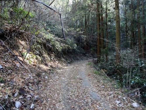 2国峰城登山道 (1200x900)