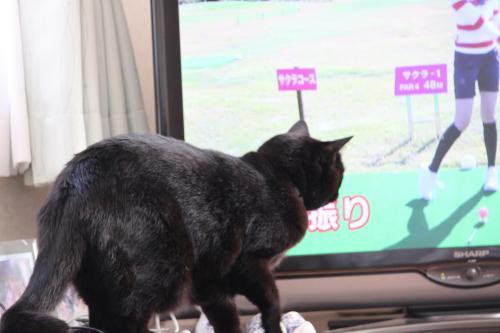 テレビっこ 2