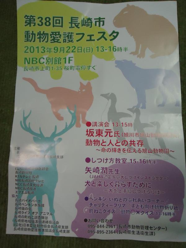 DSC00660_convert_20130923133256.jpg