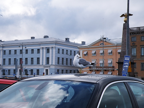 Helsinki Lokki