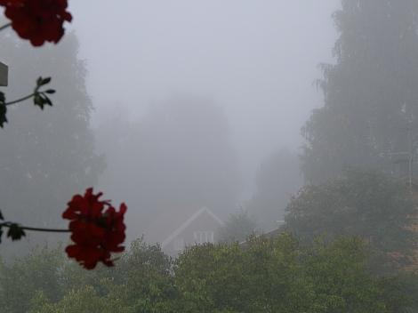Sumu 08.09.2013