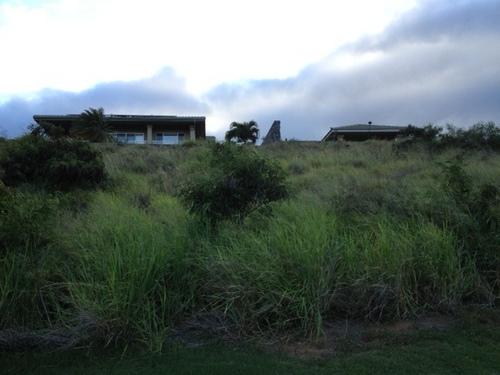 golfcourse3.jpg