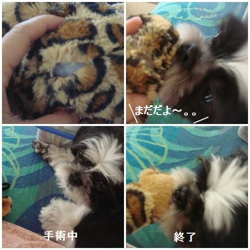 pageDSC04400x4moji.jpg
