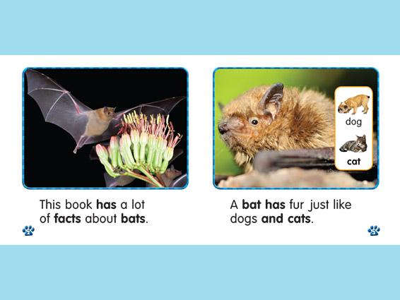 por-animal-phonics-readers-spread2.jpg