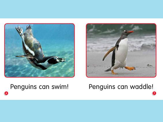 por-guided-penguins-can-go-spread1.jpg