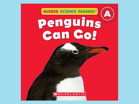 por-guided-penguins-can-go.jpg
