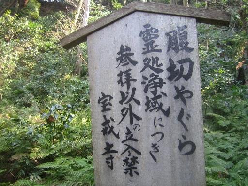 IMG_0602 - コピー