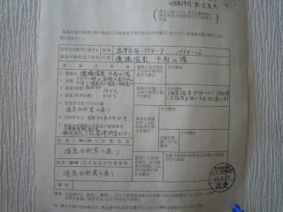 P1150526.jpg