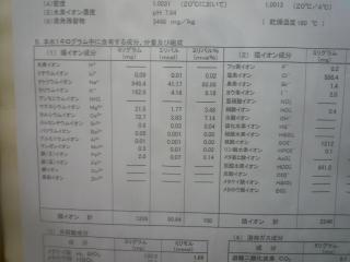 P1160215.jpg