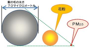 PM2.5のサイズ比較