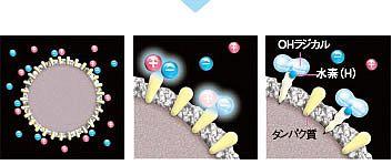 プラズマクラスター除菌のメカニズム1