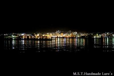 小樽夜景2