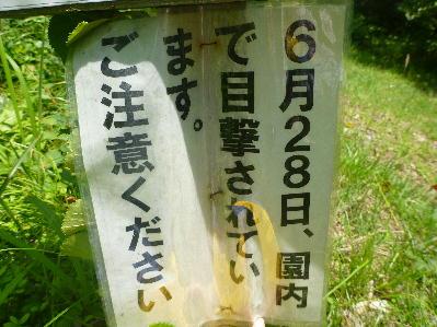 201371605.jpg