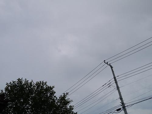 2013-7 006