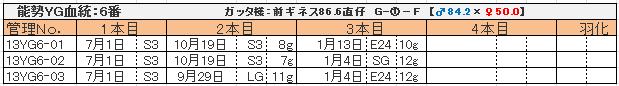 幼虫管理表13YG6