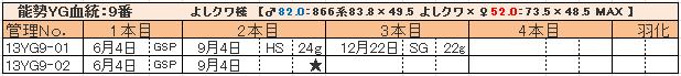 幼虫管理表13YG9