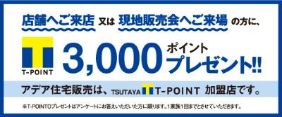 T-POINT[1]