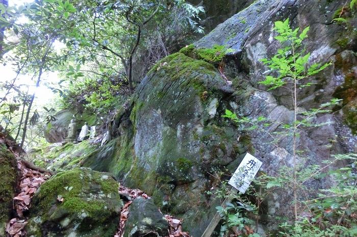 竜体山 (23)