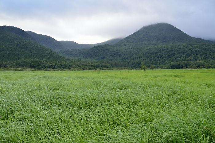 タデ原湿原 (4)