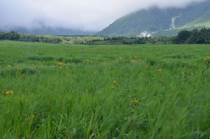タデ原湿原 (16)