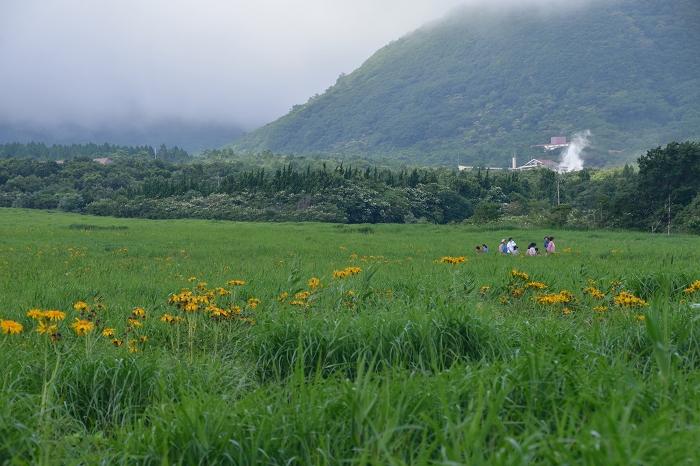 タデ原湿原 (14)