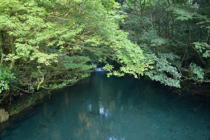 菊池渓谷 (2)