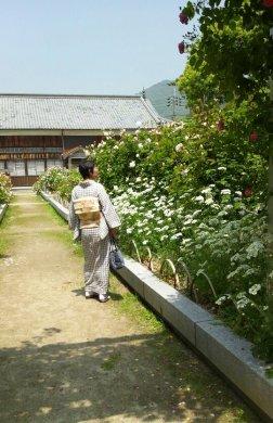 2013iwakuni4.jpg