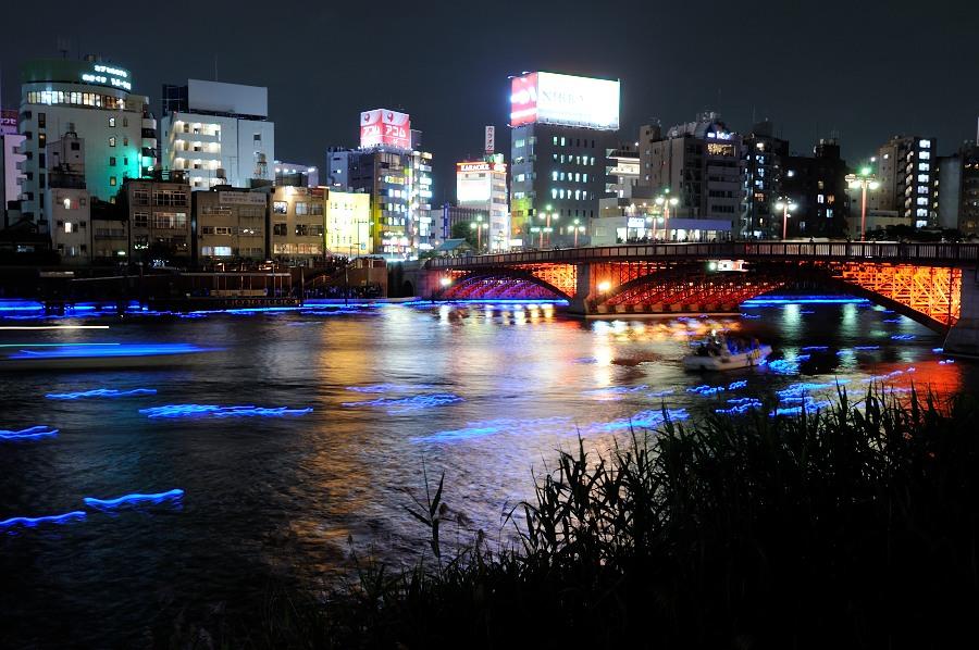 東京ホタル__03
