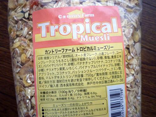 tropi-02.jpg