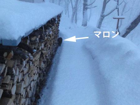 また、雪だ5