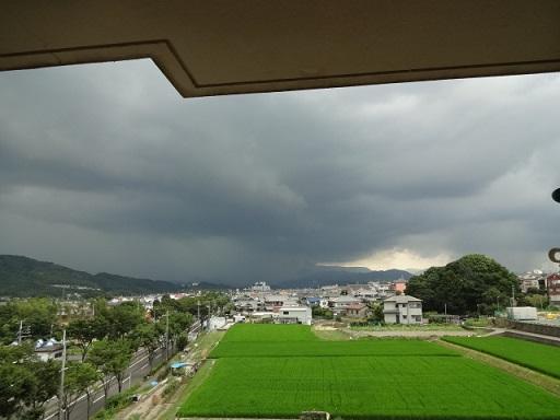 雨雲が迫ってきました