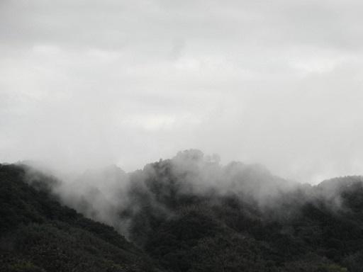 やっと上がった雨