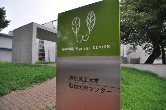 07東京農工大