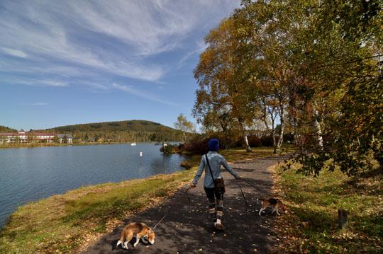 100白樺湖湖畔散歩