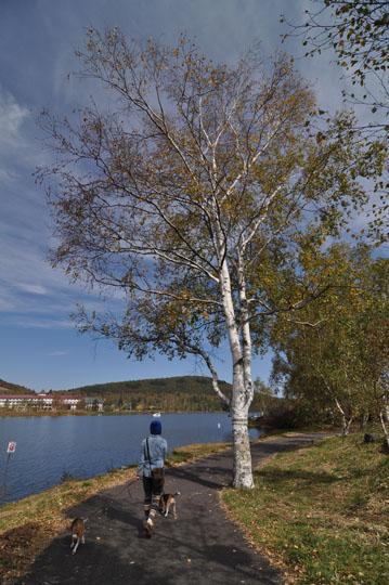 107湖畔散歩