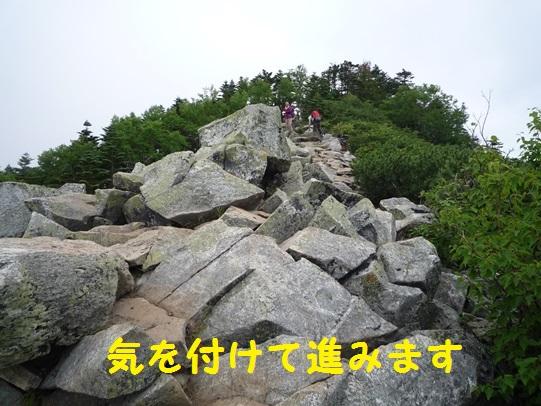 20131123150646c6e.jpg