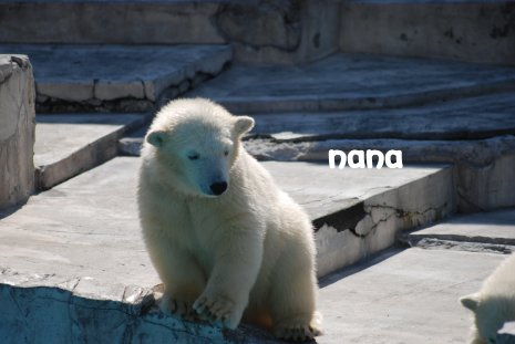 zoo20-18.jpg