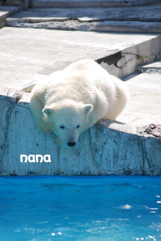 zoo20-20.jpg