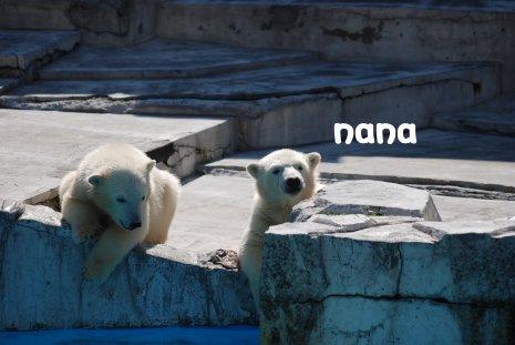 zoo20-21.jpg