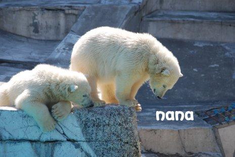 zoo20-26.jpg