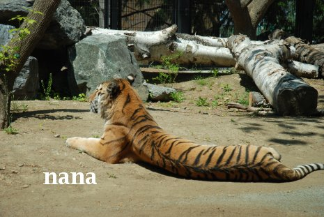 zoo20-3.jpg