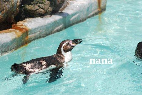 zoo20-4.jpg