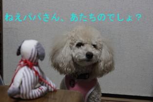 コピー ~ IMG_9292