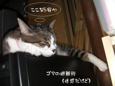 台風襲来01