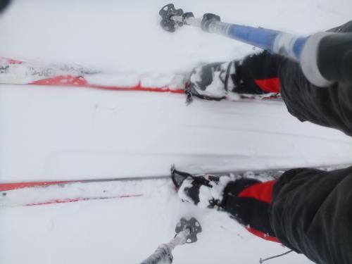 山スキー(2)