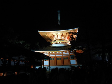夜の根本大塔