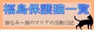 福島被災猫保護一覧